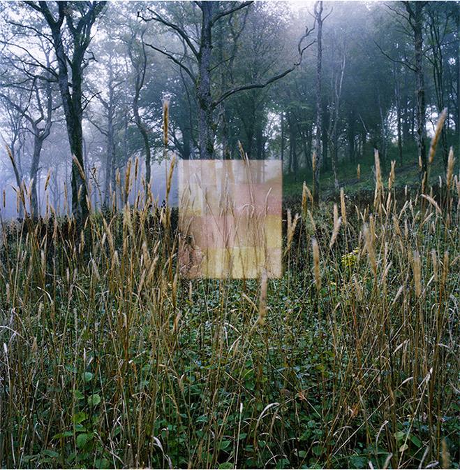 """L'oeuvre """"Vision Abstract"""" 4 réalisée par David Ledoux"""