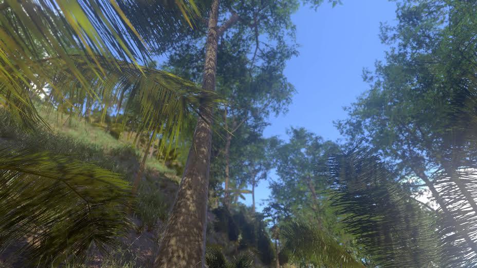 nature 2 en réalité virtuelle réalisée par Angelo Yoto